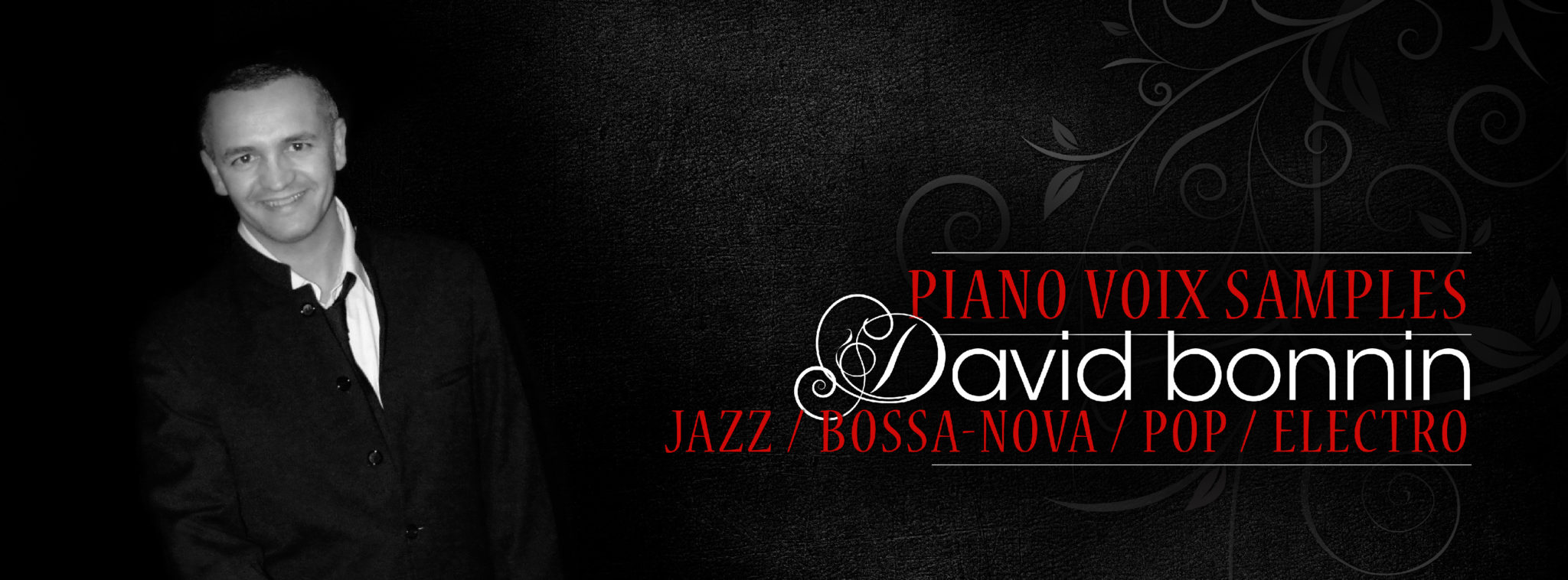 Piano-Bar voix en solo - david bonnin