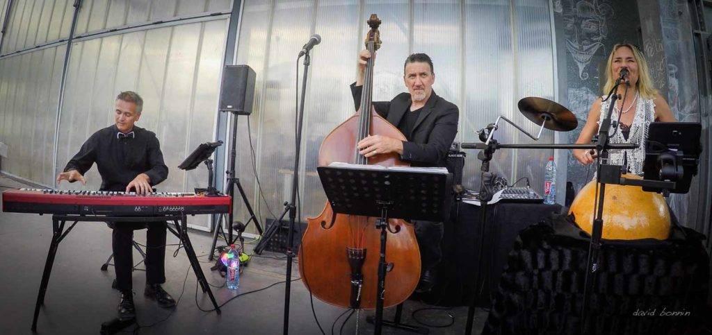 Barbara Zins trio - Villefontaine 3