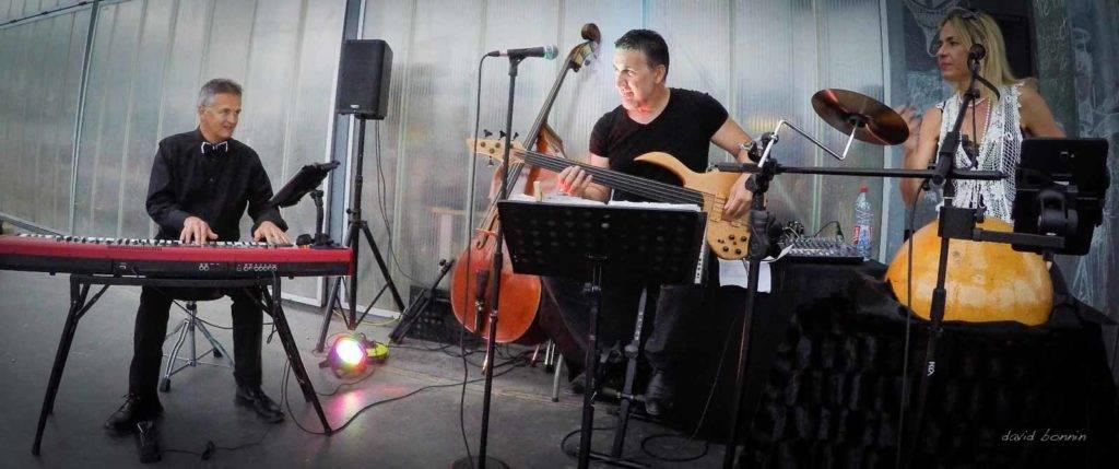 Barbara Zins trio - Villefontaine 5