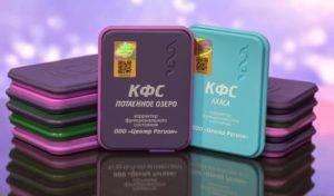 Les Correcteurs d'état fonctionnel – plaques de Koltsov – appareil à ondes scalaires